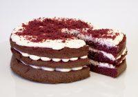 MG_9262-rv-cake2